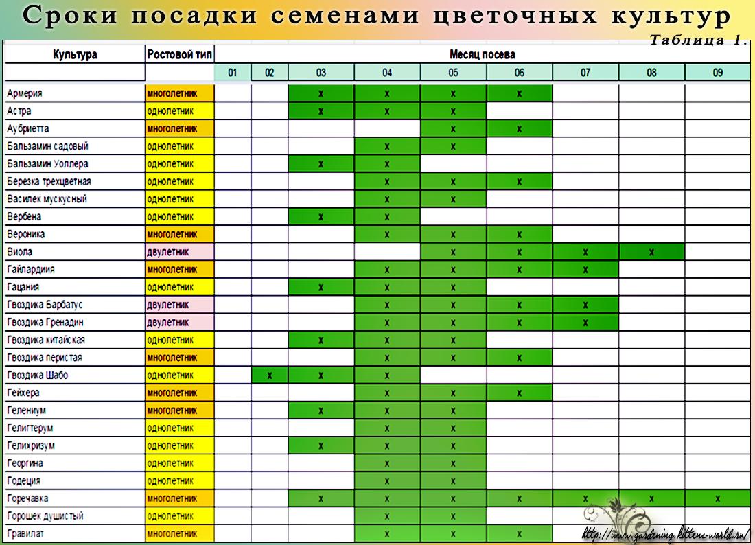Календарь для посадки семян на рассаду