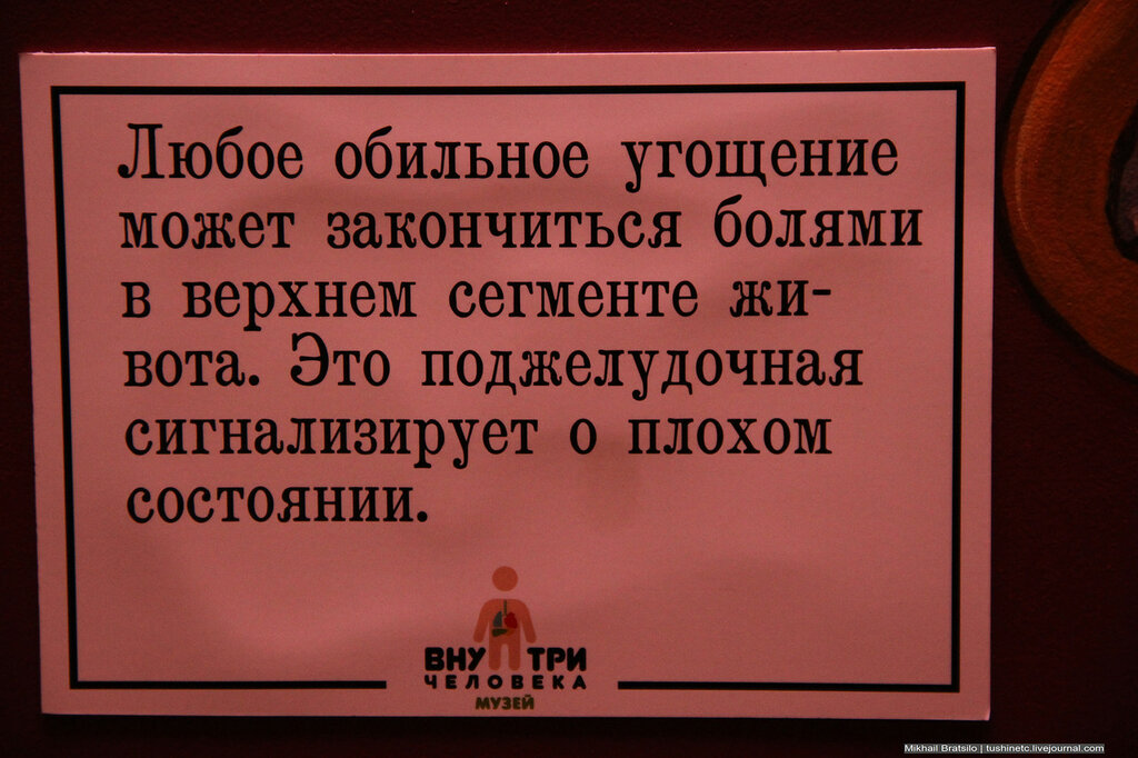 IMG_4212.jpg