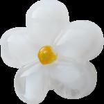 Spring_Florals_WendyP_el (43).png