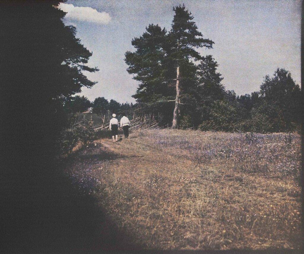 Через поля. Финляндия.jpeg