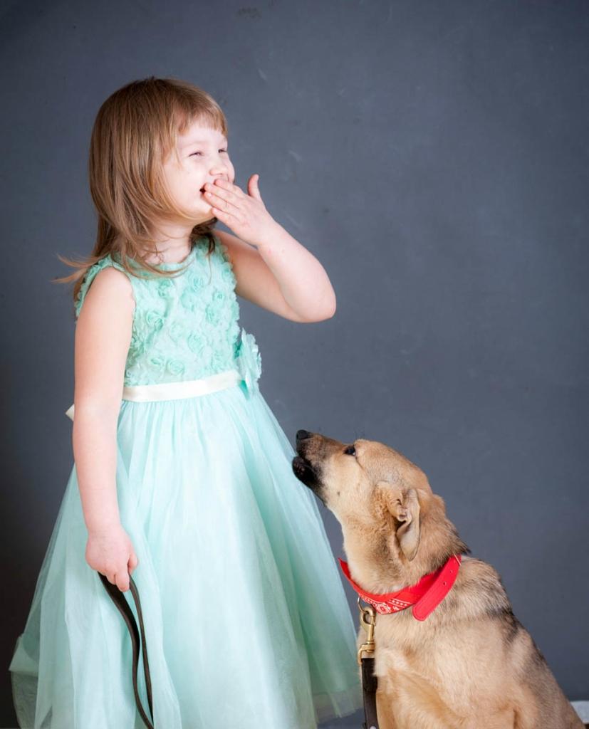 Соланж собака из догпорта