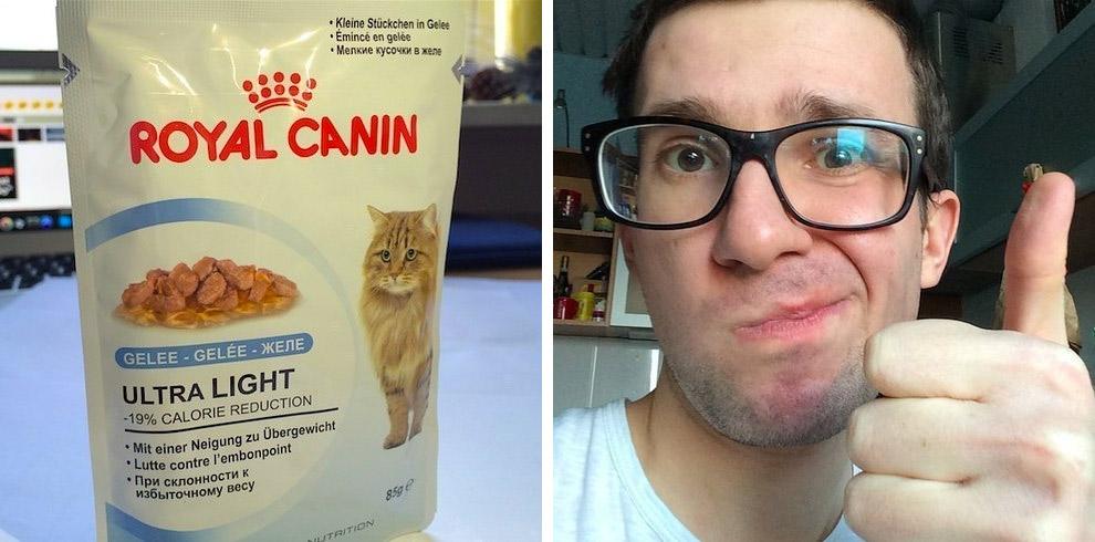кошачий корм ROYAL CANIN на вкус
