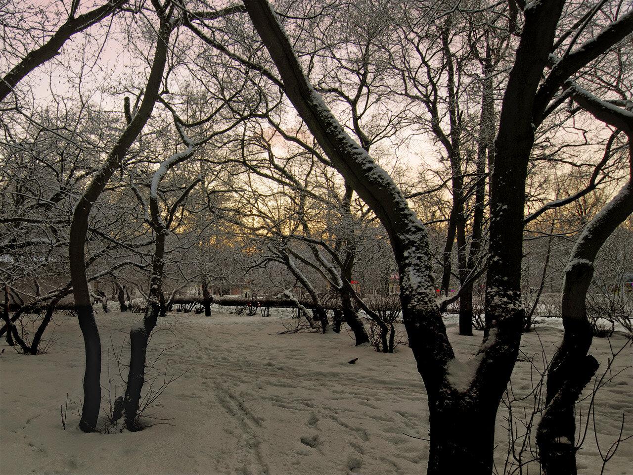Желтый вечер. Автор фото: Юрий Семенов