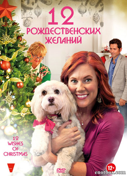 12 Рождественских желаний / 12 Wishes of Christmas (2011/DVDRip)