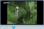 http//img-fotki.yandex.ru/get/43443/40980658.3b/0_1209e9_2c5611f4_orig.png