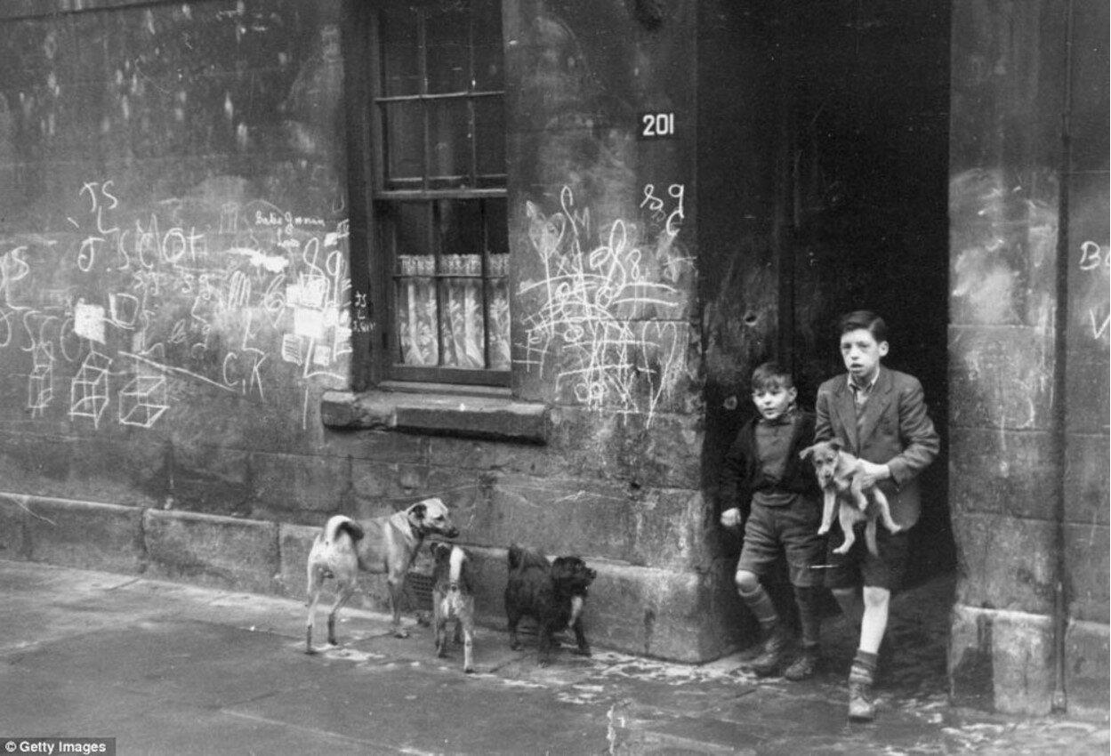 1948. Два мальчика с своими собаками на одной из улиц в Горбалсе, Глазго