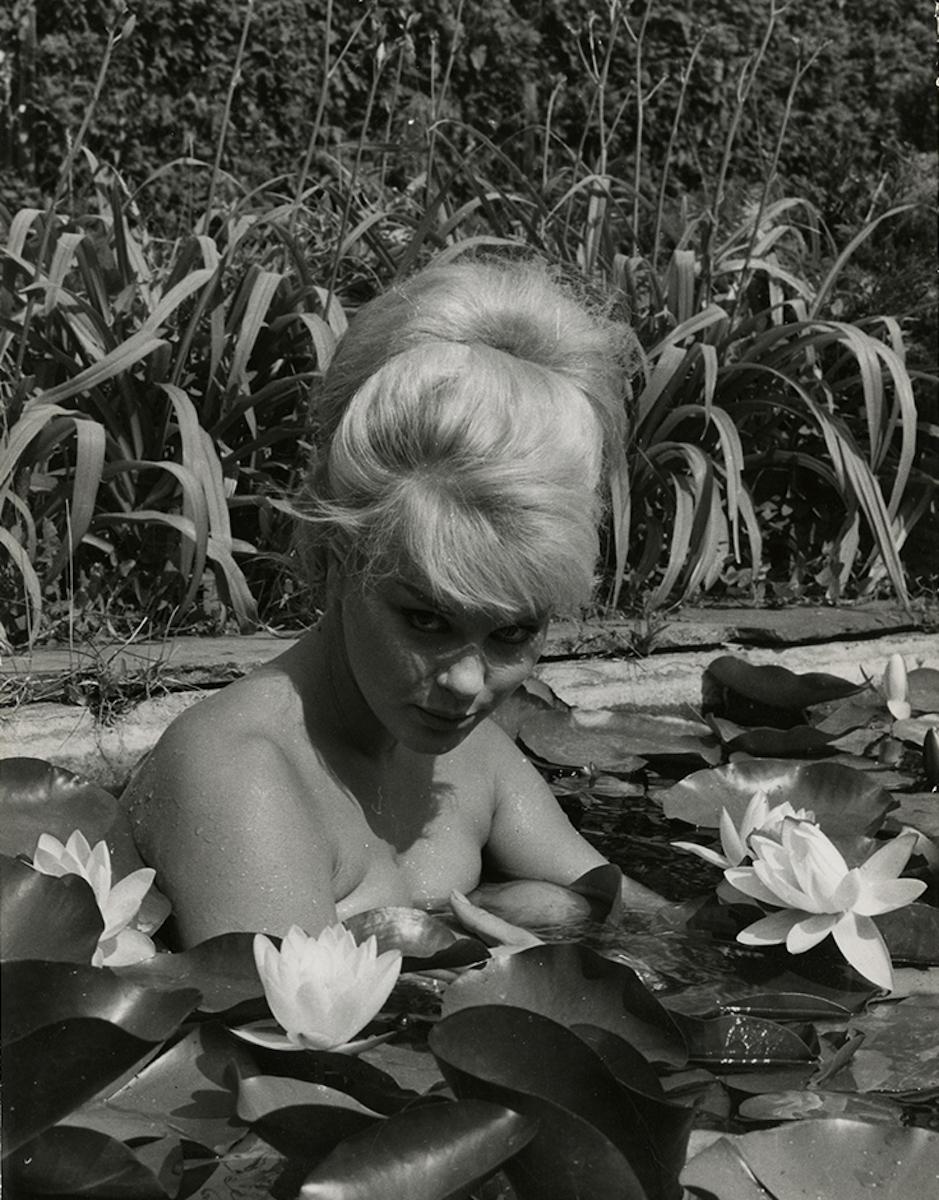 Elke Sommer, 1960s.jpg