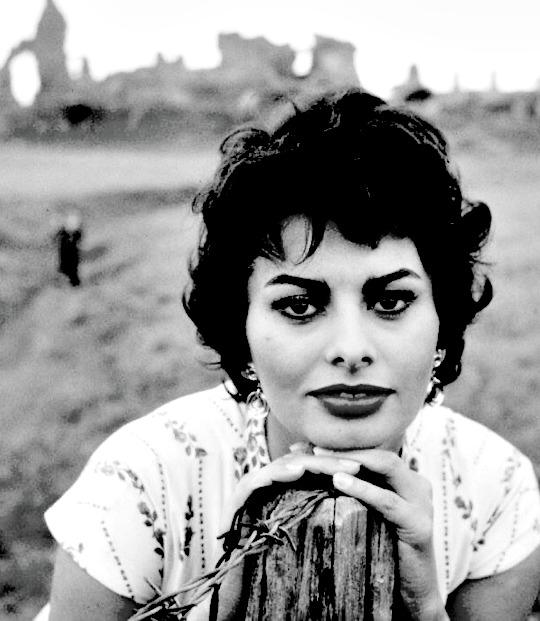Sophia Loren in the 1950s.jpg