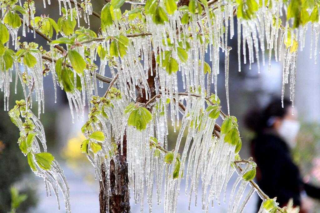 CHINA-WEATHER-ICE