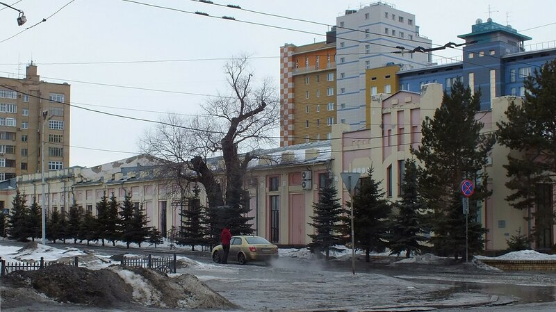 Белая ива у здания Омскводоканала