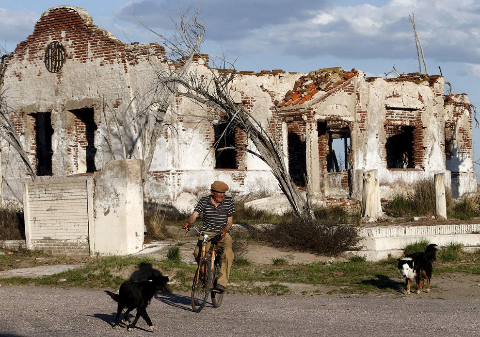 8. Единственный житель «Аргентинской Атлантиды». (Фото Enrique Marcarian   Reuters):