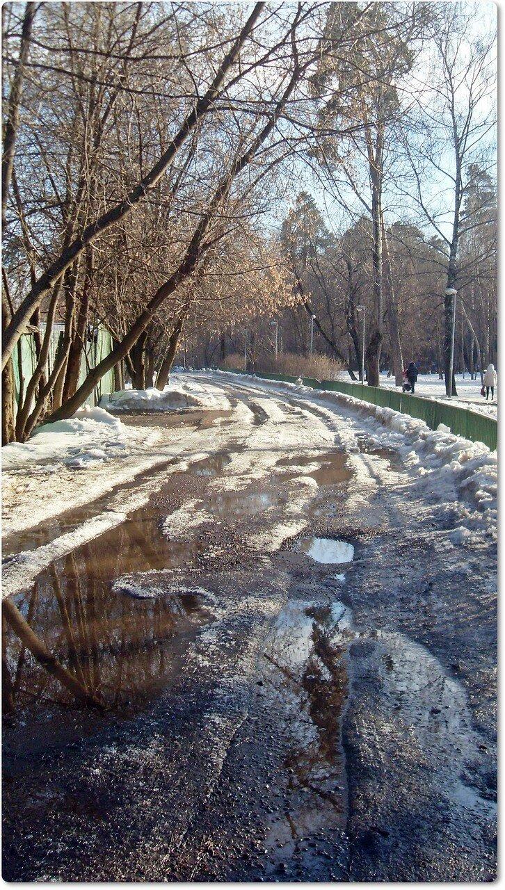 Весенние дороги