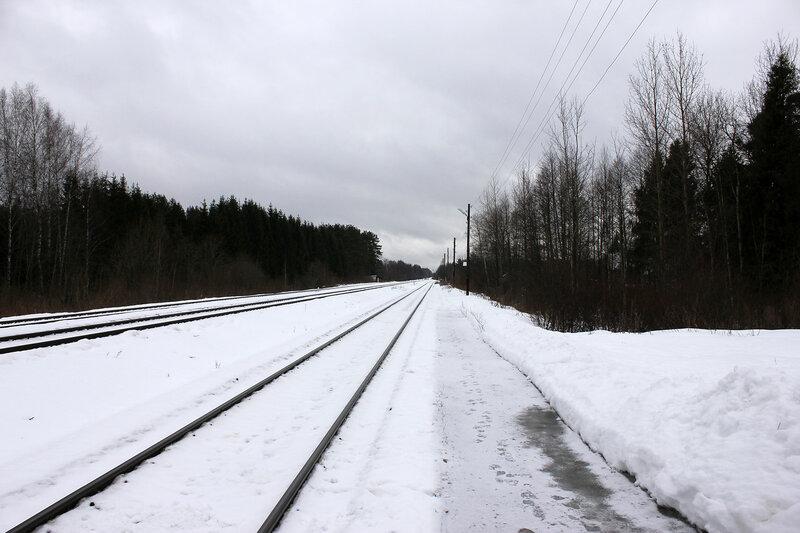Станция Белый городок, вид на Савёлово