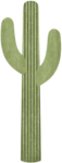 TAS_W4EBT0115_Dreamn4everDesigns_cactus 1.png