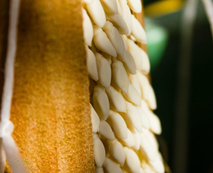 7. Обратите внимание — шипы на ветке закрыли бы доступ к соцветию. Так выглядит мужское соцвет