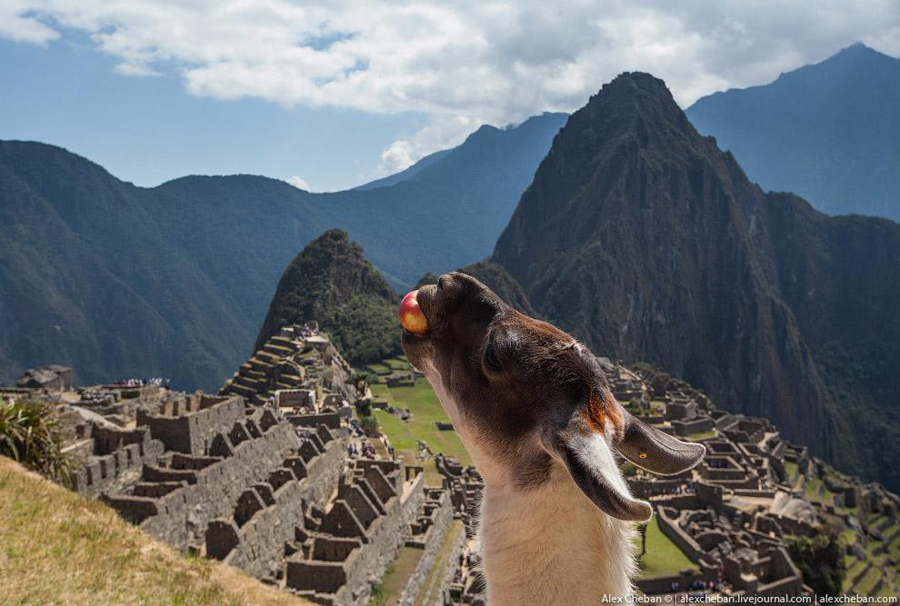 6. Некоторые археологи полагают, что этот город был создан как священный горный приют великим п