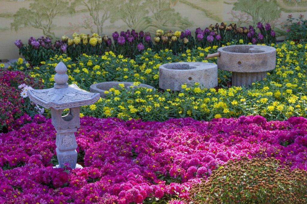 Хризантемы и каменный фонарик