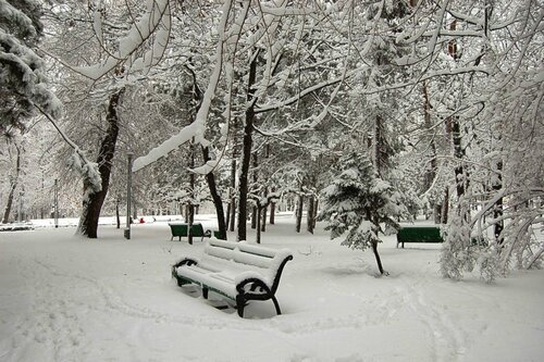 Дорожные службы Кишинёва рапортуют, что справились со снегом