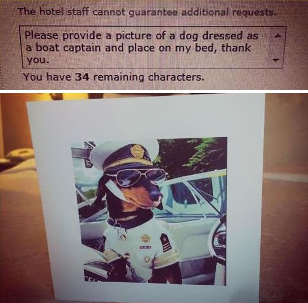 «Пожалуйста, предоставьте фотографию собаки, наряженной капитаном корабля, и поставьте ее на кровать