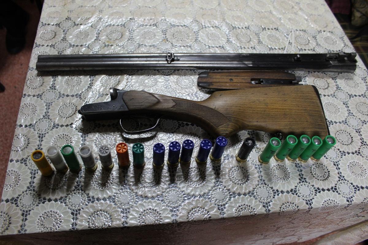 Два кузбассовца нелегально  убили  лосиху и 2-х  лосят