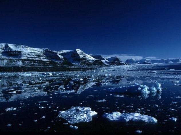 ВАрктике тайный гул содна океана распугал рыб иживотных