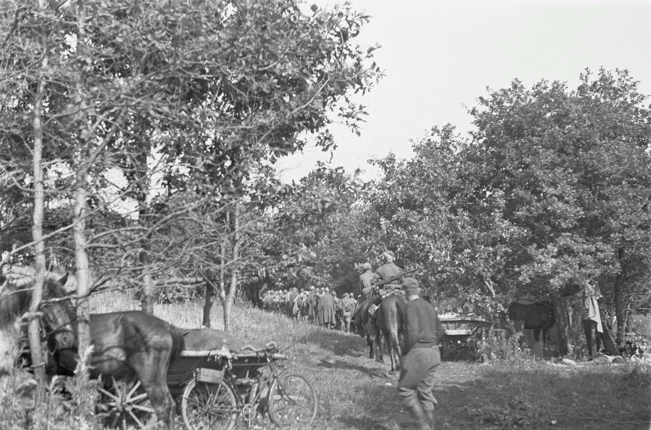 После боевых действий. Колонна военнопленных в сопровождении конвоиров на лошадях