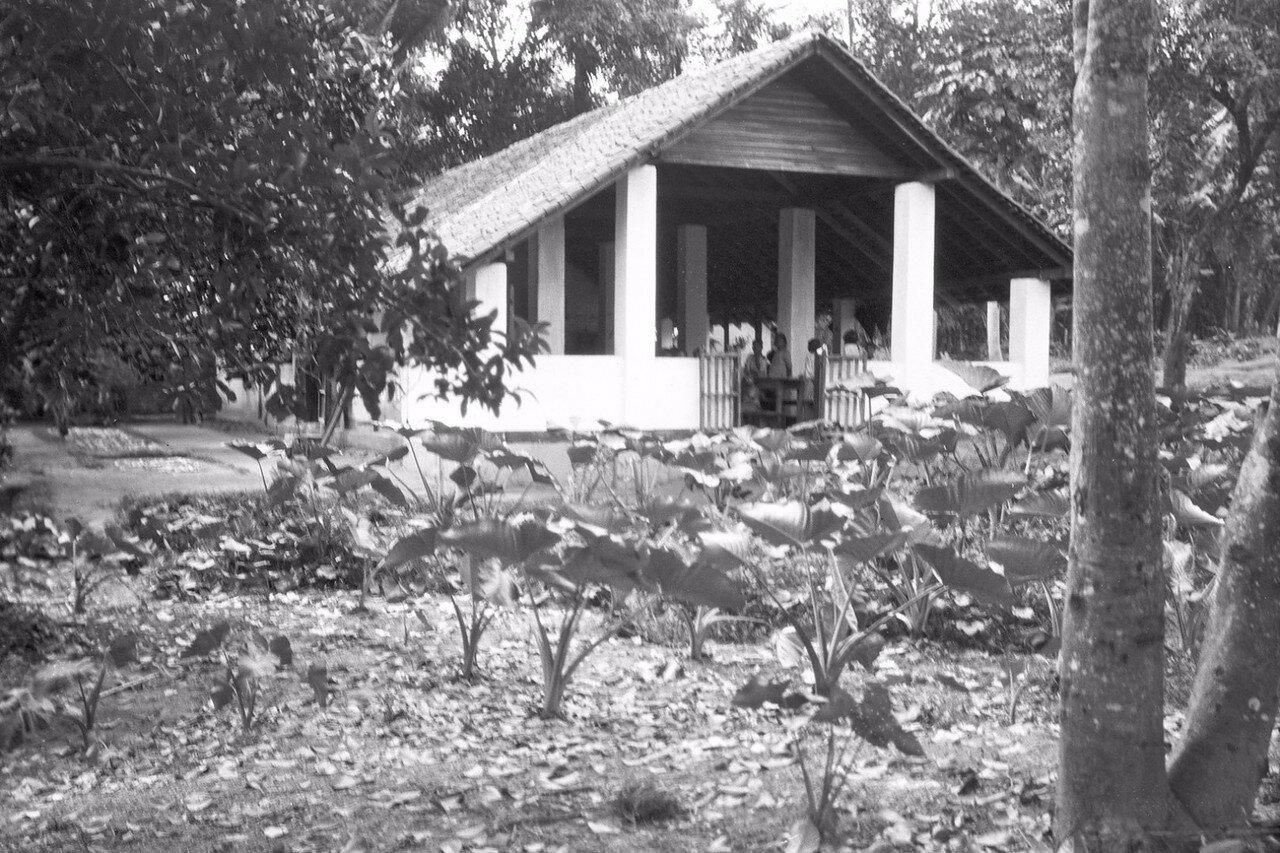46. Школа в Медагаме (провинции Ува)