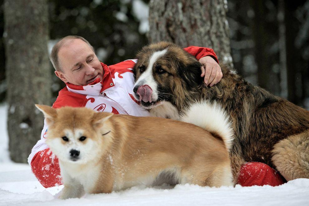20. Путин и собачки. Президент на прогулке с собаками в подмосковной резиденции Ново-Огарёво, март 2