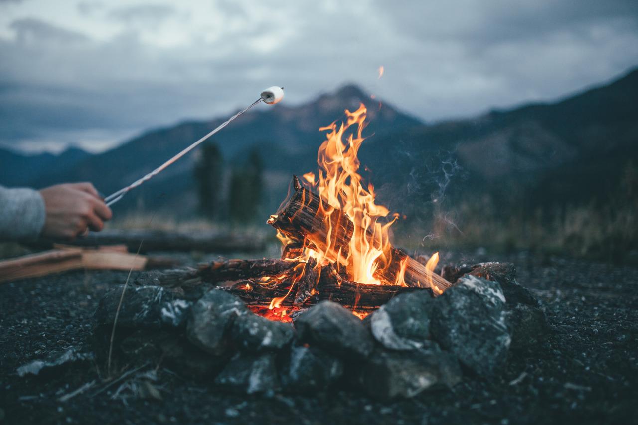 ВБурятии поджигателя леса посадили втюрьму