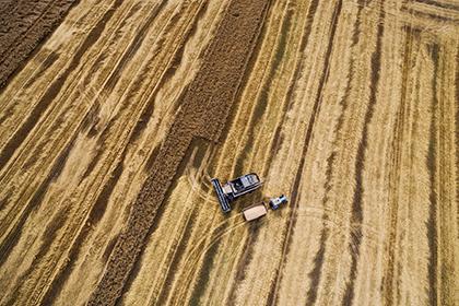 Минсельхоз: Российская Федерация нарастила экспорт зерновых на19% в предыдущем 2016