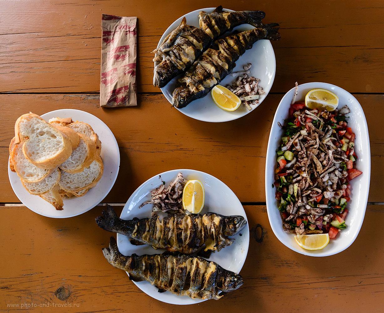 Фото 10. Форель, салат, хлеб и чай. Такой ужин обходится на отдыхе в Турции в сумму от 70 до 90 лир (один раз в глухих горах заплатили 20 лир в придорожном кафе, но то - исключение). 1/60, 4.5, 2500, 26.