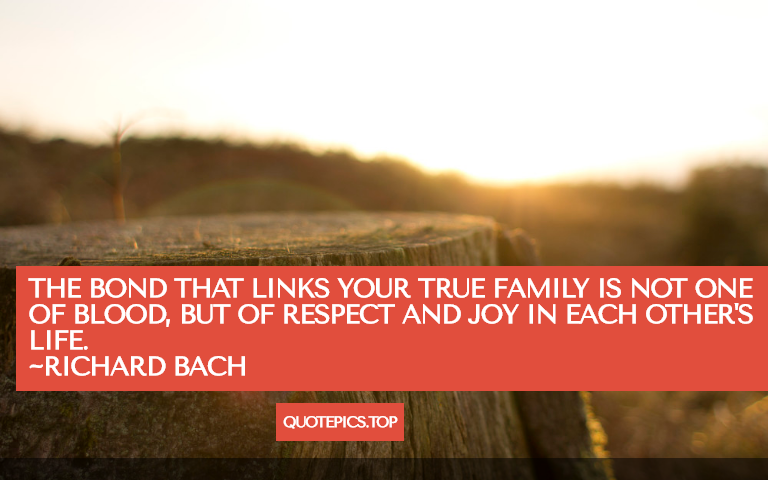 The bond that links your true family is not one of blood, but of respect and joy in each other's life. ~Richard Bach