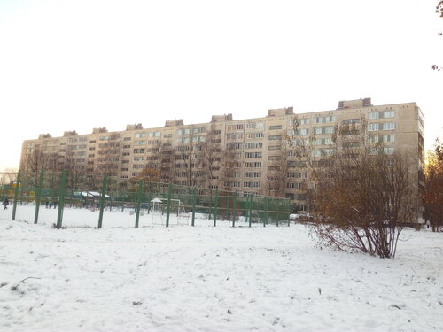 ул. Дыбенко 38