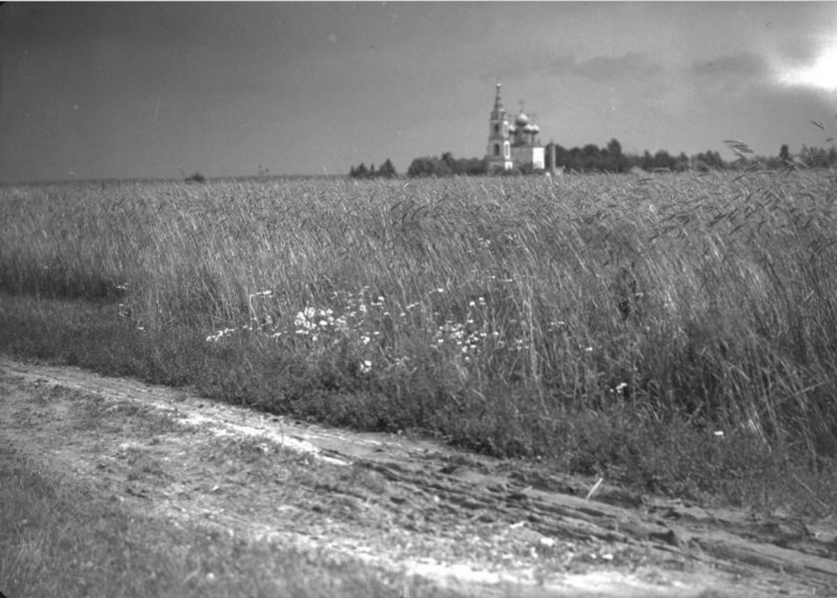 Село Пушкино. Вид на поле и Никольскую церковь