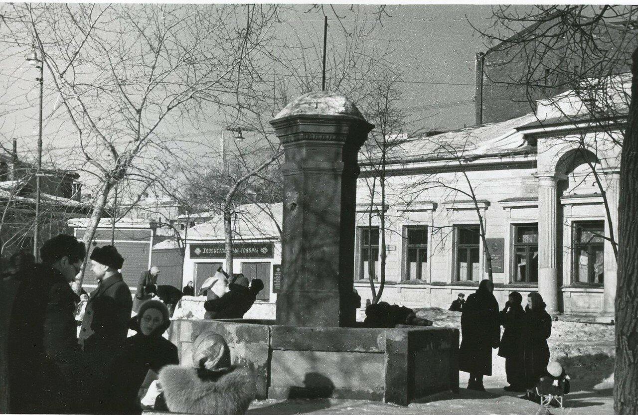 1959. Собачья площадка