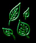 golgTIM_ML_el (9).png