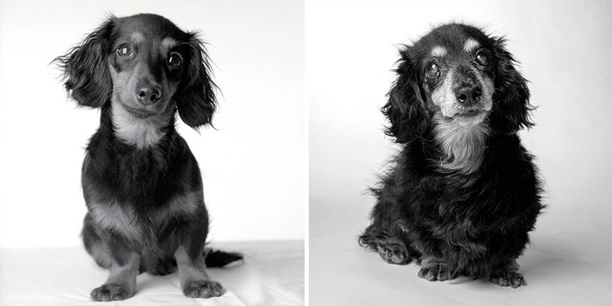 3. Лили: 8 месяцев и 15 лет