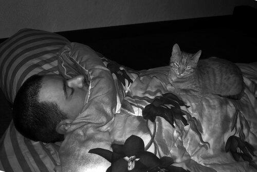Спят, суббота.