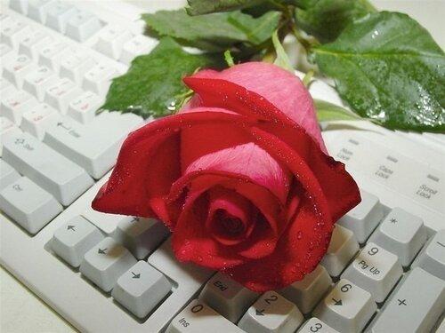 http://img-fotki.yandex.ru/get/4400/miksai.436/0_60777_e82239b3_L.jpg