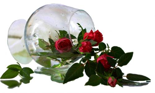0_11616d_4b8e788_L.png