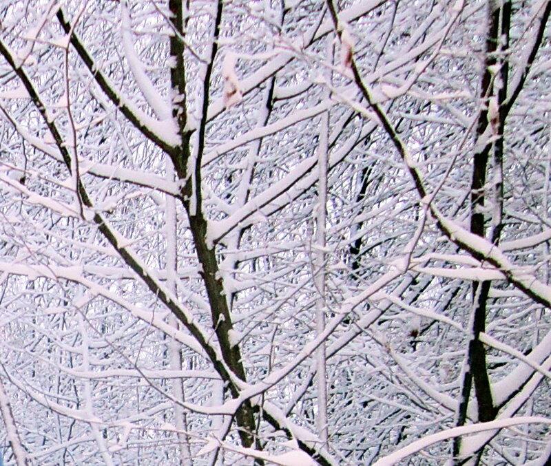 Фотограф Александр Кобезский, Адыгея, Кавказ, 02.01.12