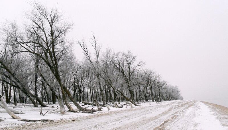Зимой на косе, январь 2012