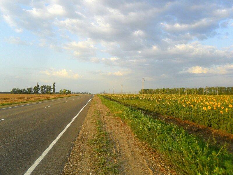 Дорога, поля, утро ... SAM_8098.JPG