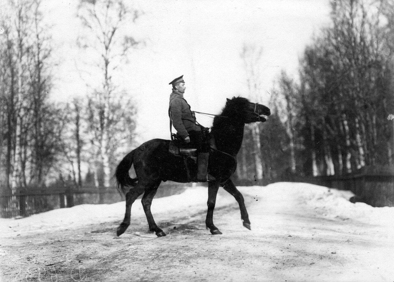 16. Конный стражник. 1908
