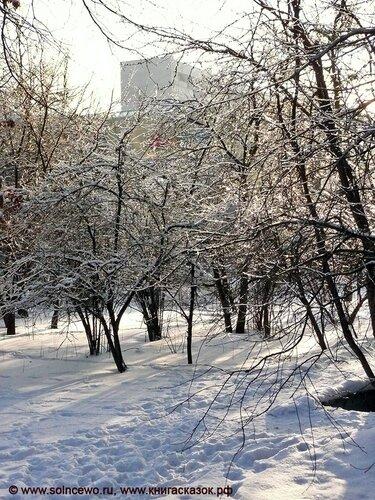 http://img-fotki.yandex.ru/get/4401/foto-re.94/0_4dfa6_6531bc0d_L.jpg