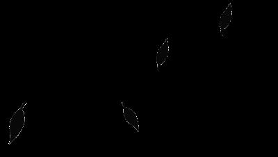 0 4a4df aeb40d4 L - PNG K��esi