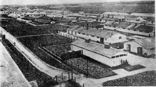 Общий вид концлагеря Талергоф в 1917 г.