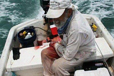 ...акулам из Института морских исследований в Эйлате, рассказал GZT.RU о том, что нападения.