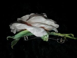 Роза - царица цветов 3 - Страница 2 0_10689e_a73171e0_M