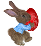 easter rabbit2.png